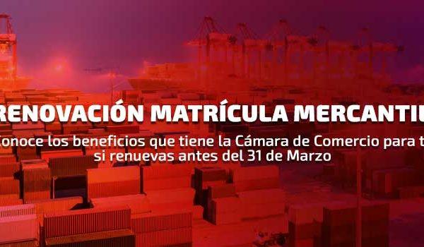Cámaras de comercio y sus beneficios por Renovación de Matrícula Mercantil